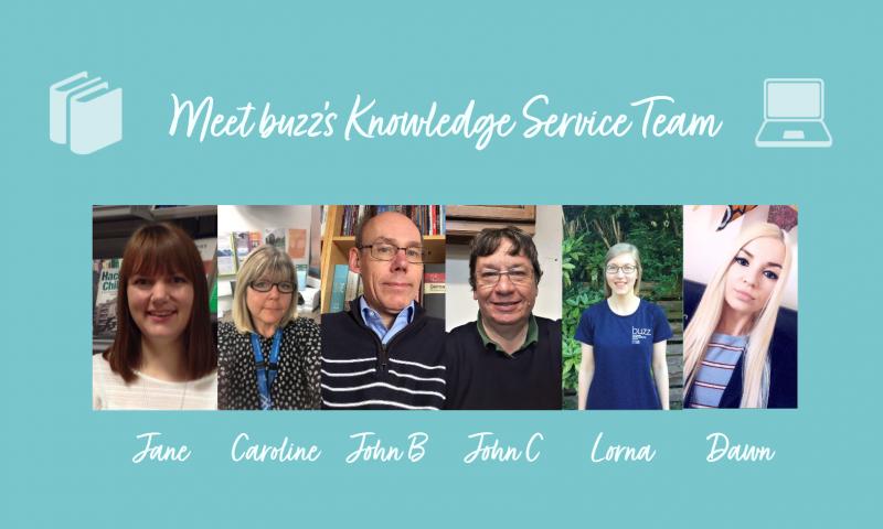 Meet buzz's Knowledge Service Team