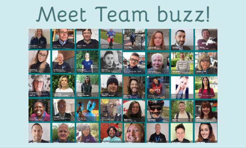 Meet Team buzz!