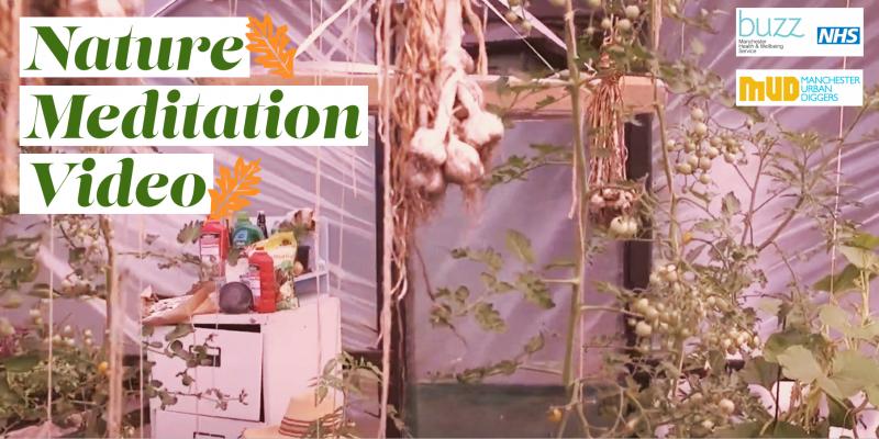 Nature Meditation Video